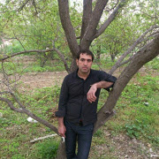 Roohi Ahmadi