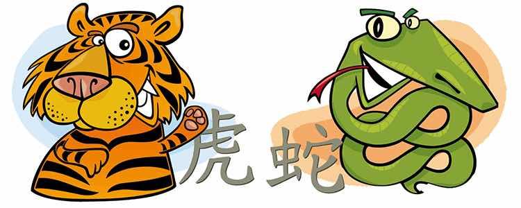 تصویر از اینجاست http://astrologyk.com/zodiac/chinese/compatibility/tiger/snake