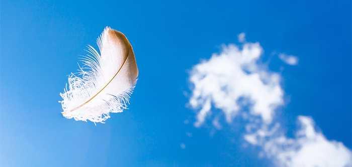 آدم بودن و فرشته شدن