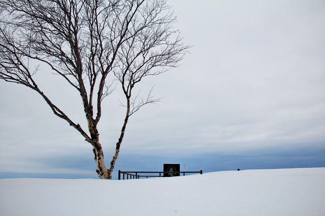 قبری تنها در کنار دریای سفید