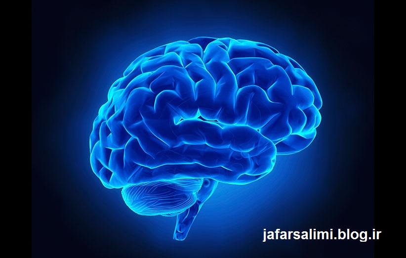 مغز برای بازیابی خاطرات قدیمی برعکس عمل می کند