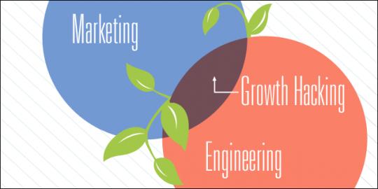 آیا هک رشد جایگزین بازاریابی است؟