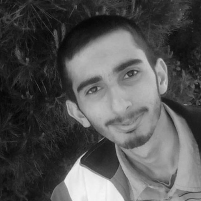 محمد امین جمالی