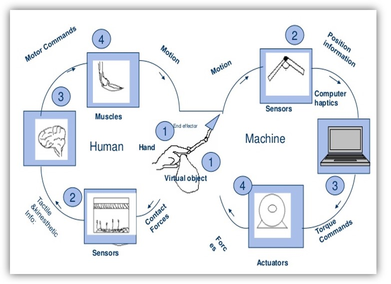 ساختار تکنولوژی هپتیک