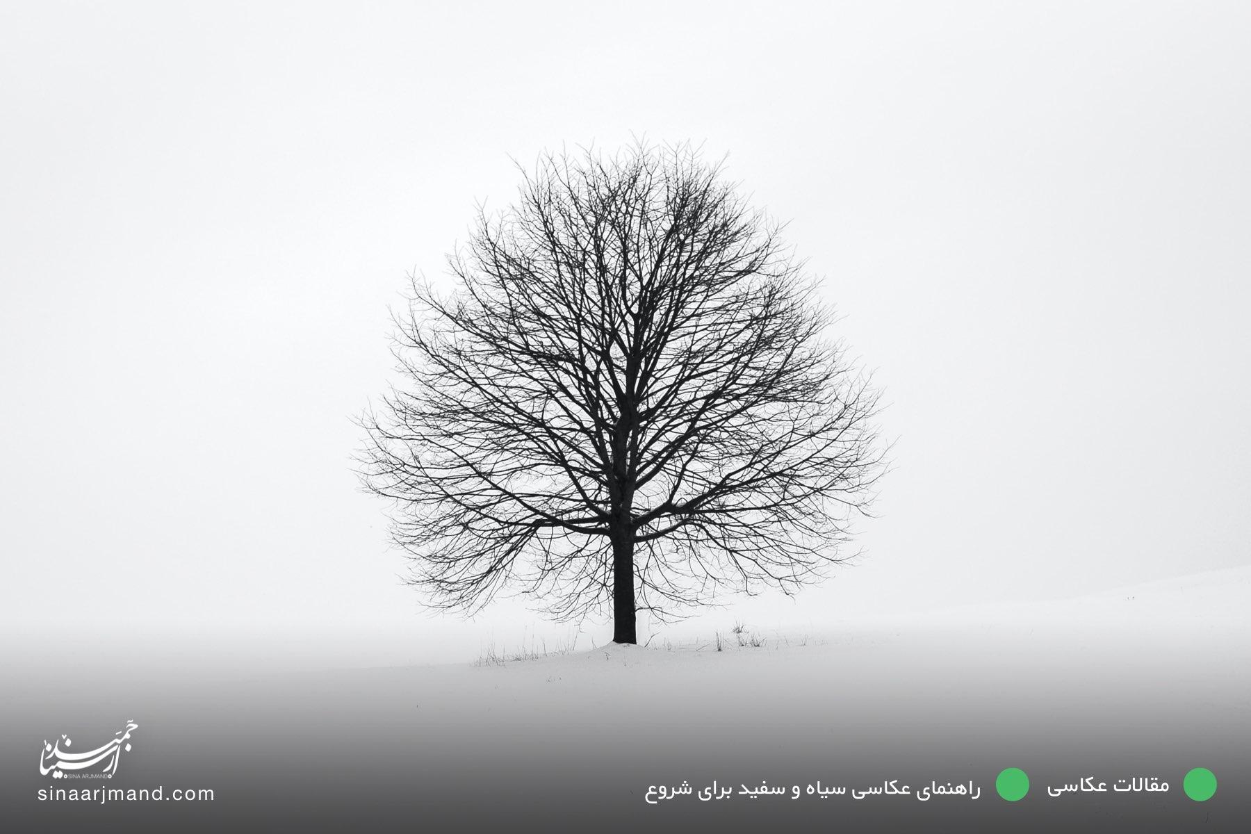 راهنمای عکاسی سیاه و سفید برای شروع🏳️🏴