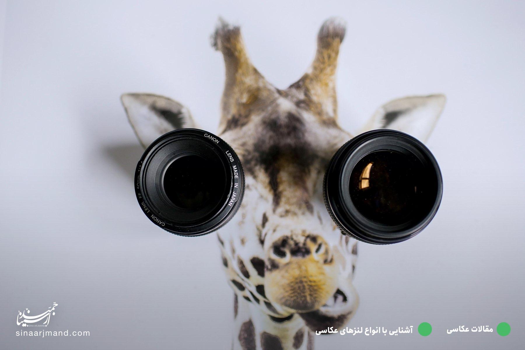 آشنایی با انواع لنزها در عکاسی 📷 👨🏼🏫