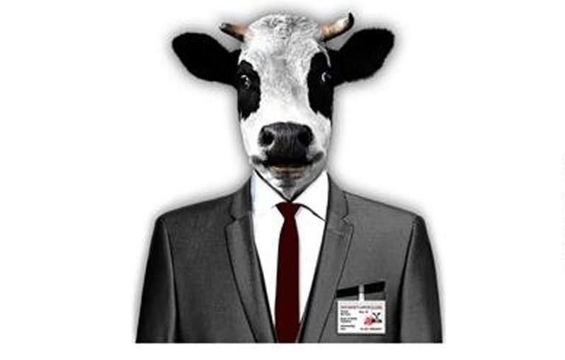 عصاره کتاب چگونه گاو را بکشیم!!!