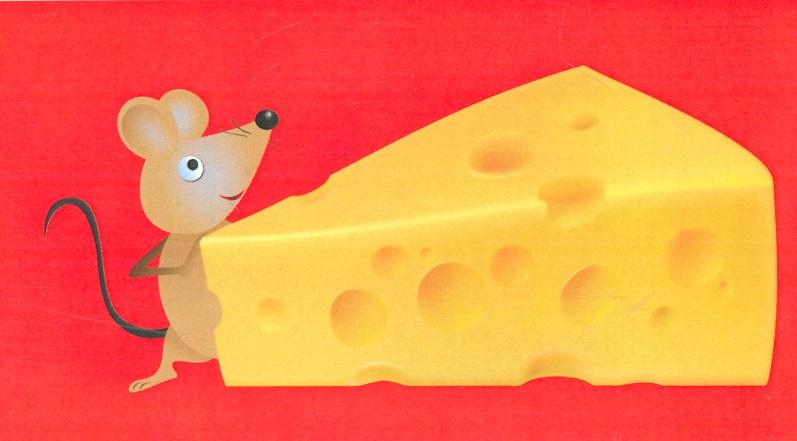 آیا واقعا باید دنبال پنیرم می رفتم؟!