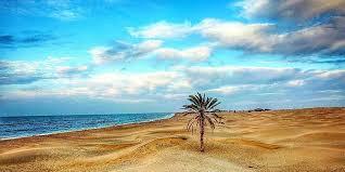 یلدا در سواحل مکران | 29 آذر