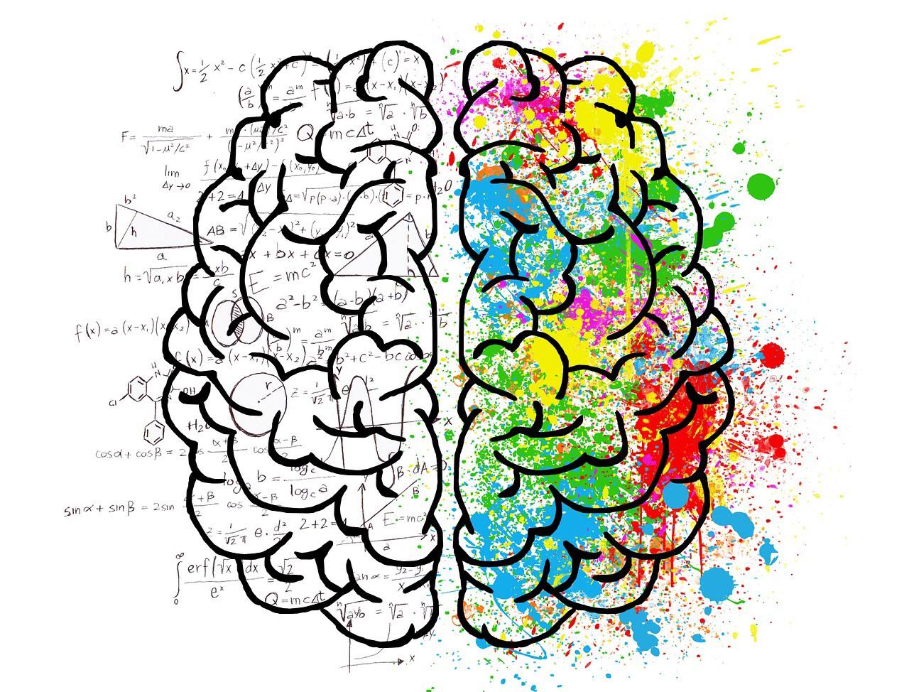 دوست داری تغییرات اساسی تو زندگیت بدی؟ پس سیمکشی مغزت رو عوض کن