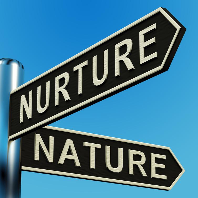 دوراهی طبیعت و تربیت جایی است که یکبار باید تصمیم بگیری که سرنوشتتو دست کدوم یکی بسپری